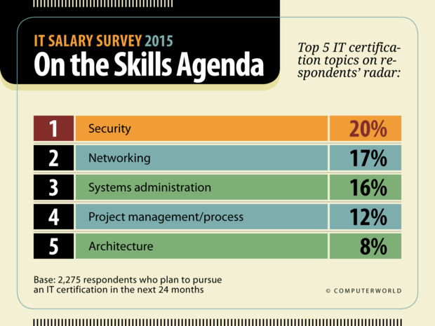 Computerworld: IT Salary Survey 2015  >  On the Skills Agenda