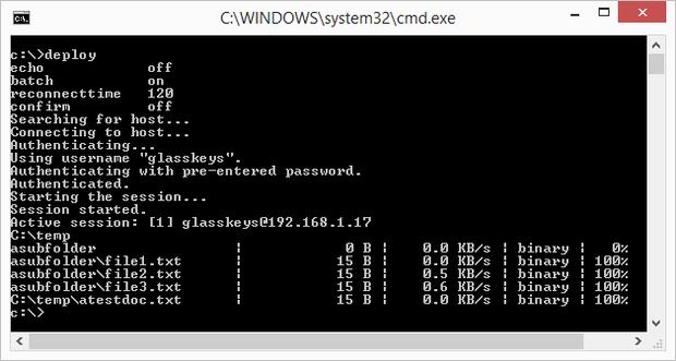WinSCP running command line SFTP script