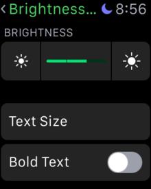 change brightness apple watch