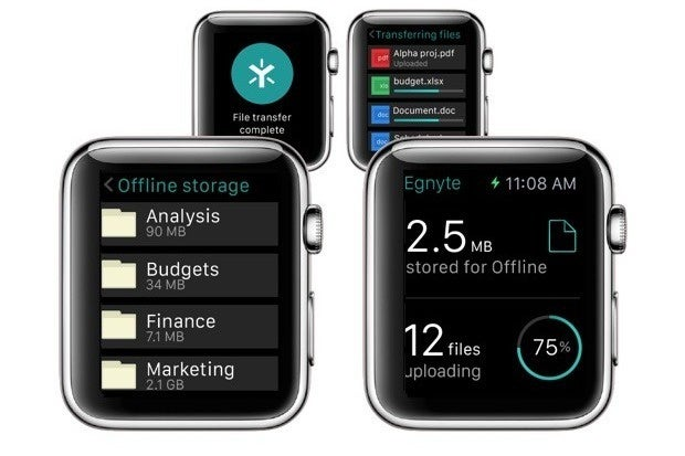 cio yet another reason to budget for an apple watch
