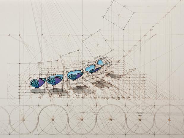 diaethrea sequence artwork.jpg
