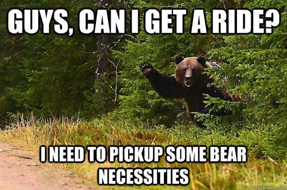 thelist bear get a ride