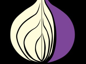 tor logo