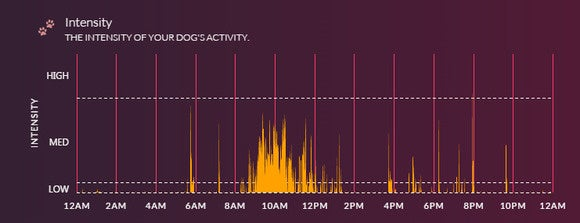 voyce intensity level graph
