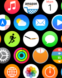 apple watch home screen icons one size reduce motion on