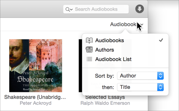 audibook view options