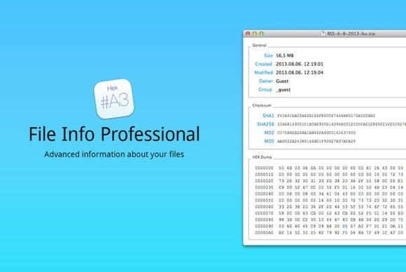 fileinfoprofessional