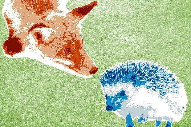 images of a fox and a hedgehog