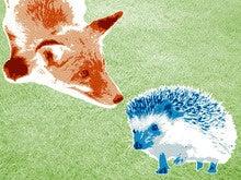 Decide if you're a hedgehog or a fox