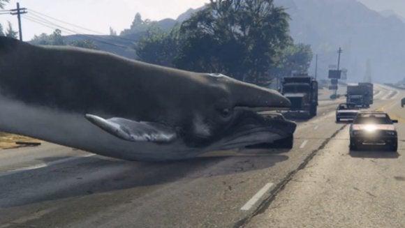 GTA V Whale