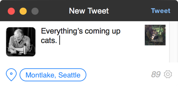 tweetbot 2 new tweet window