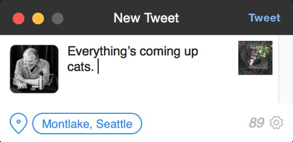 tweetbot 2 new tweet window