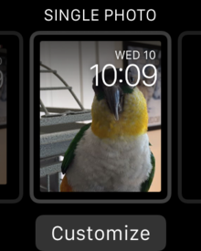 watchos beta 1 single photo watch face