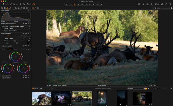 Capture One Raw adjust before