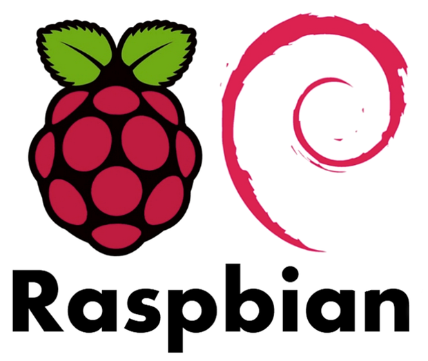 Raspbian Server Edition, a stripped-down version of Raspian designed for servers