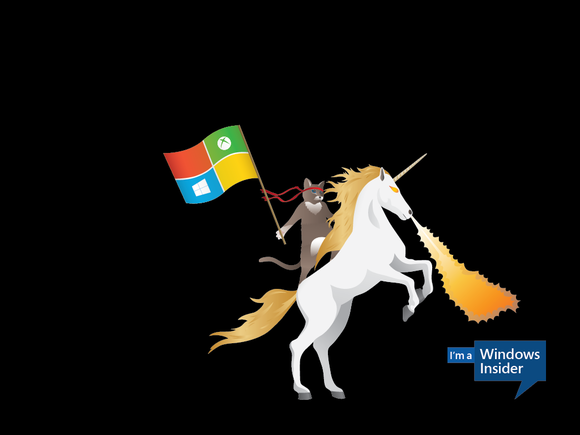 windows insider ninjacat