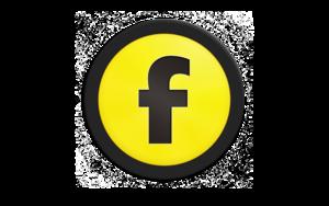 freeway express 6 icon