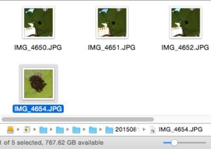photos find file in finder