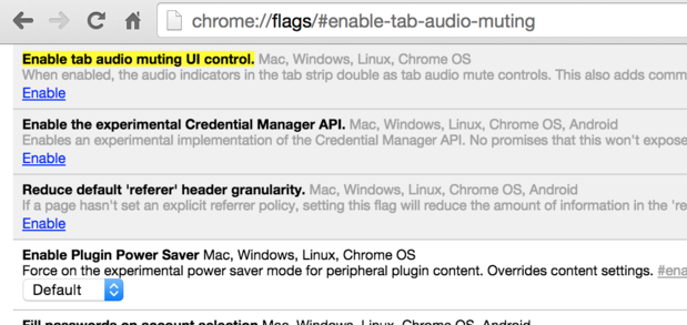 Chrome browser flag screen