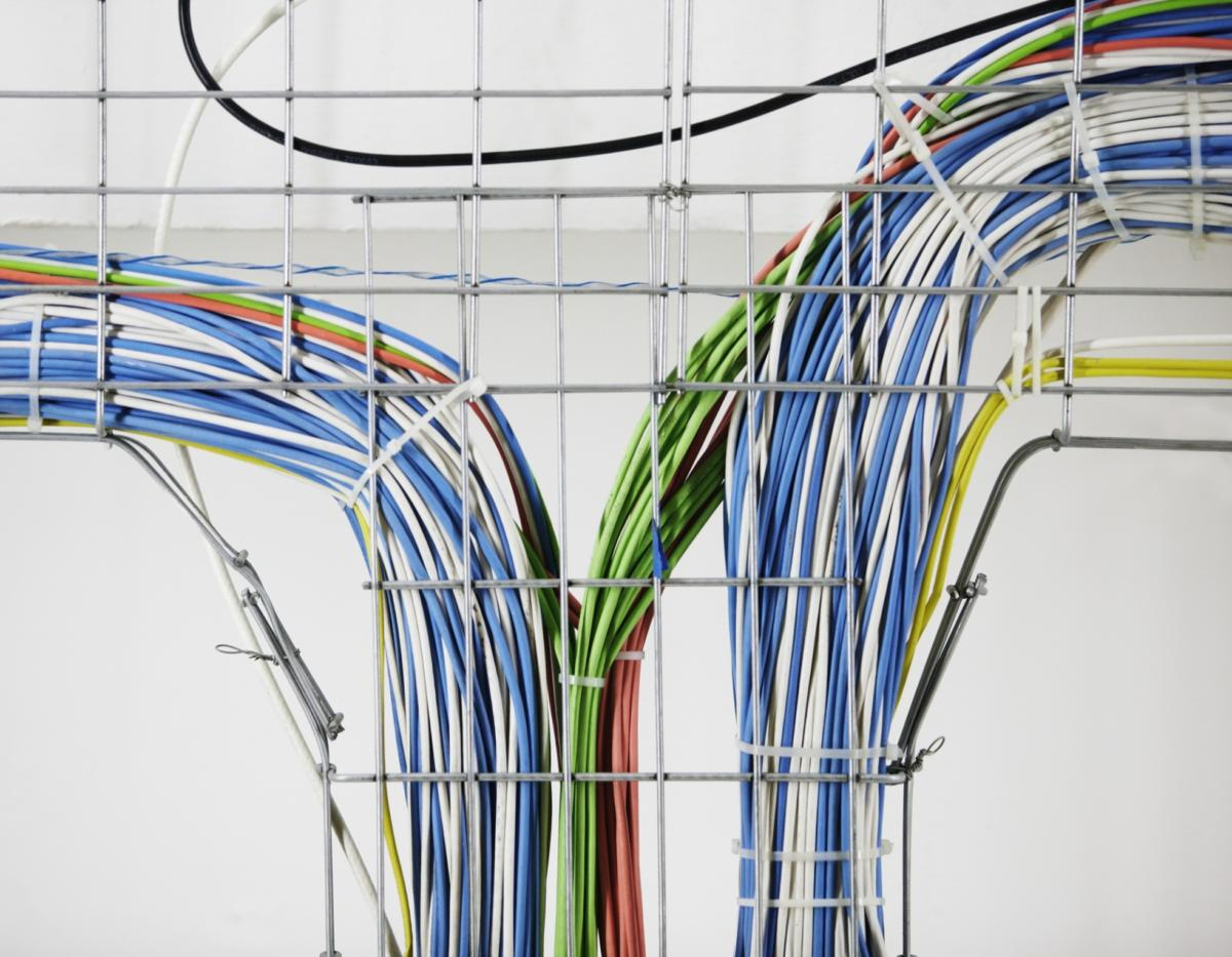 colorful network cables