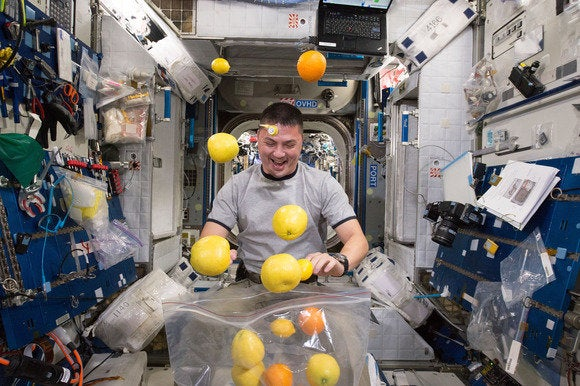 nasa image aug 25 2015 kjell lindgren fruit