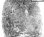 NIST sets the stage for contactless fingerprint readers