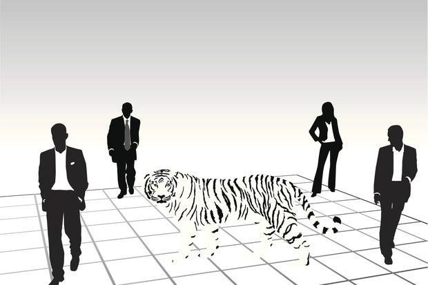 tiger it team ts