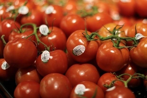 100715blog tomatoes