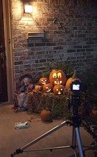 143578 pumpkin setup original