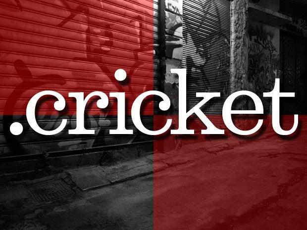 5 cricket