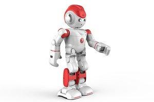 Alpha2 robot