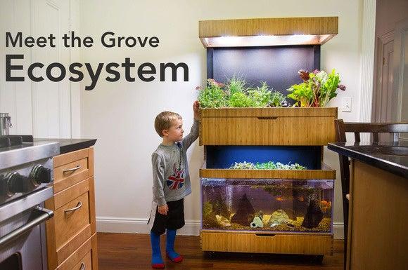 Grove Labs Ecosystem