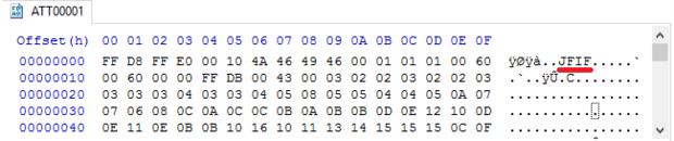 HxD dump of ATT00001 file