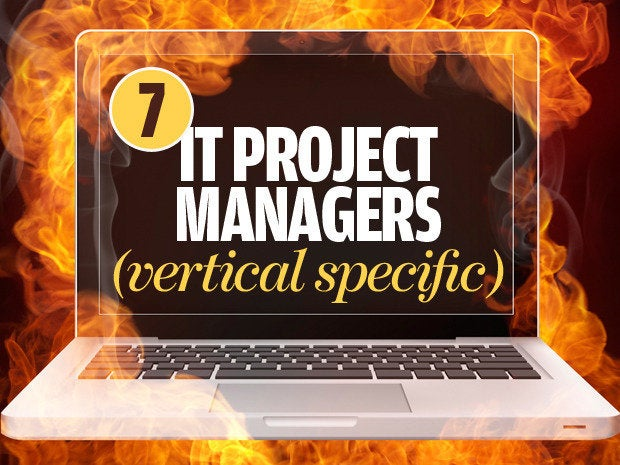 IT project managers (vertical specific)
