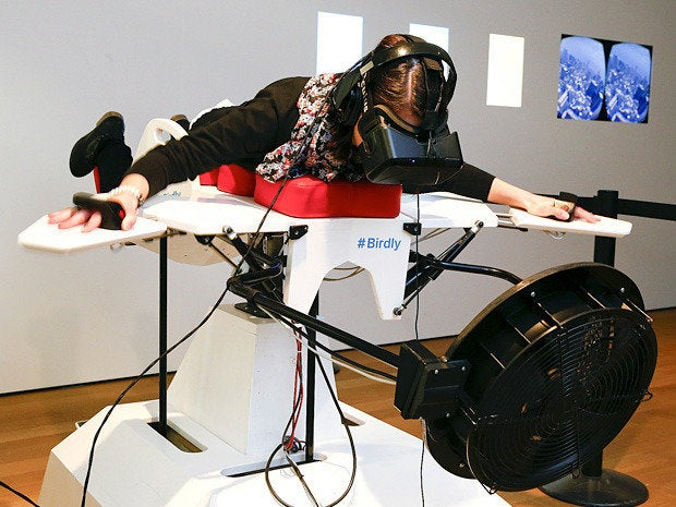 flight simulator Birdly
