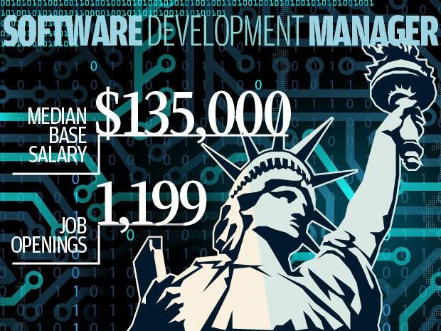 7. Software development manager