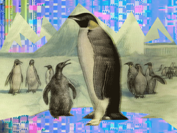 Free as can be: gNewSense is true GNU Linux