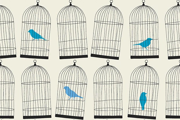 twitter cages