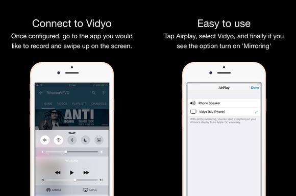 vidyo screen shots