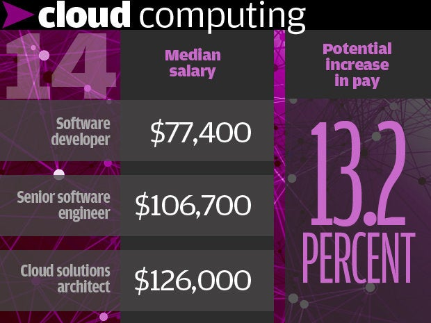 14. Cloud computing 13.2%