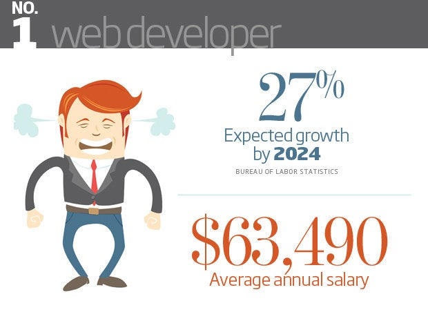 Web Developer