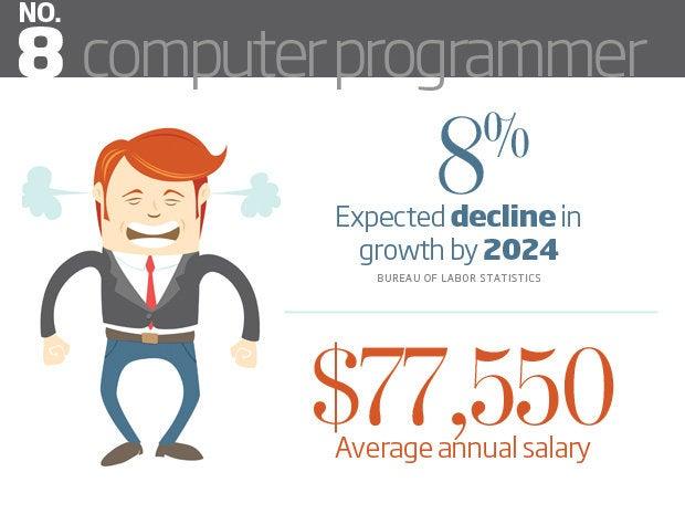 Computer Programmer