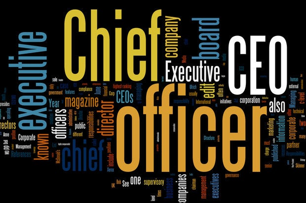 CEO role