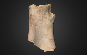 chinese oracle bone 3d printed