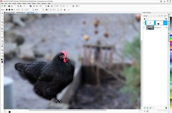 coreldraw graphics suite x8 4