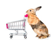 How the Easter Bunny Ensures Supply Chain Traceability