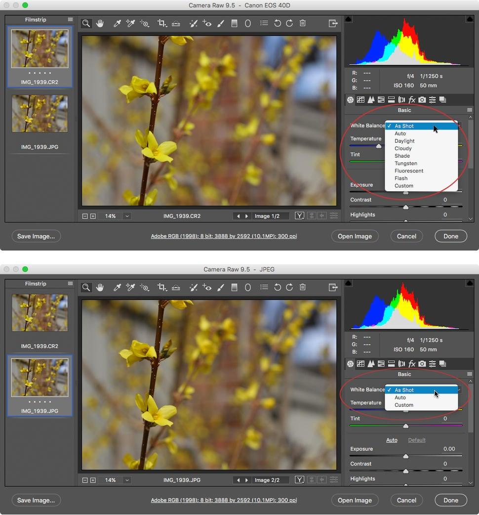 Understanding photography lighting