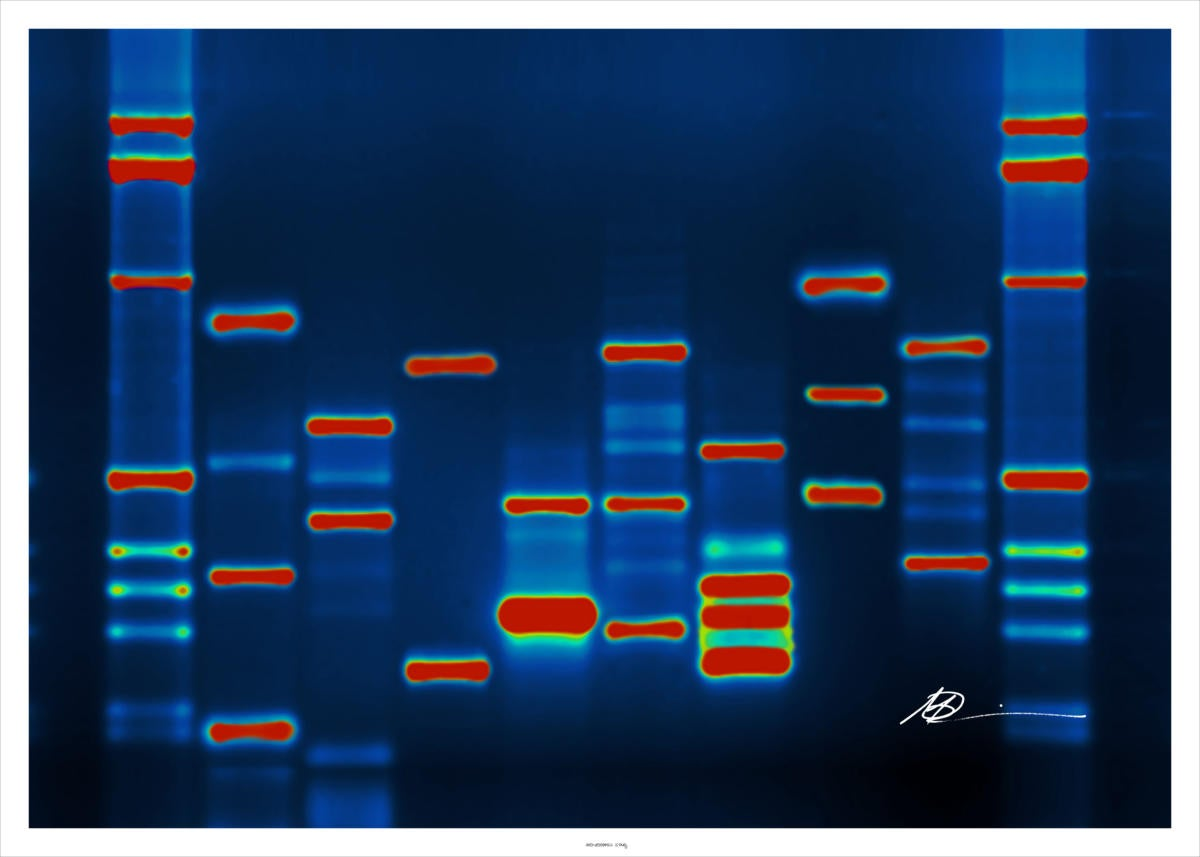 Microsoft is making big data really small using DNA