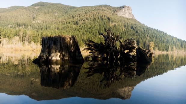 HTC 10 photo sample_landscape