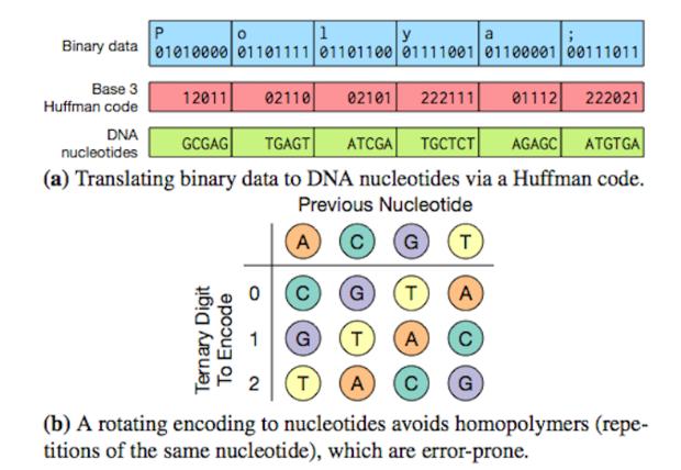 DNA data storage archive
